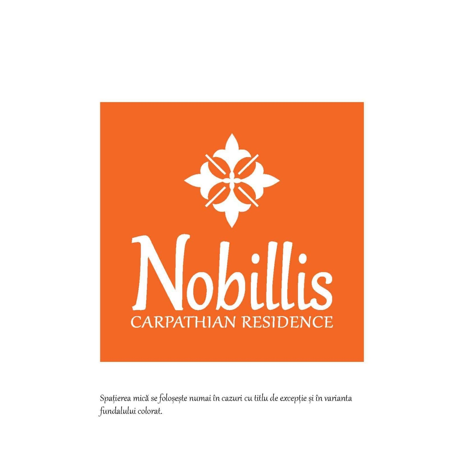 Styling Guide Nobillis, Toud Design Agency, Identity design